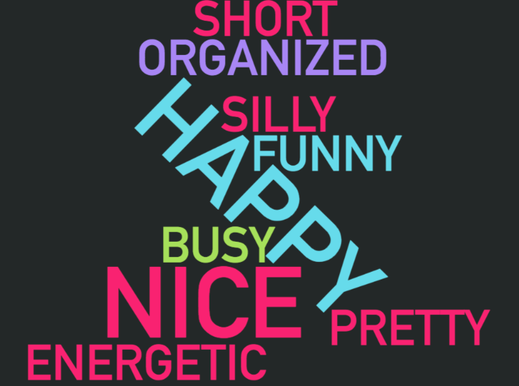 Word cloud with short, organized, silly, funny, happy, busy, nice, pretty, energetic